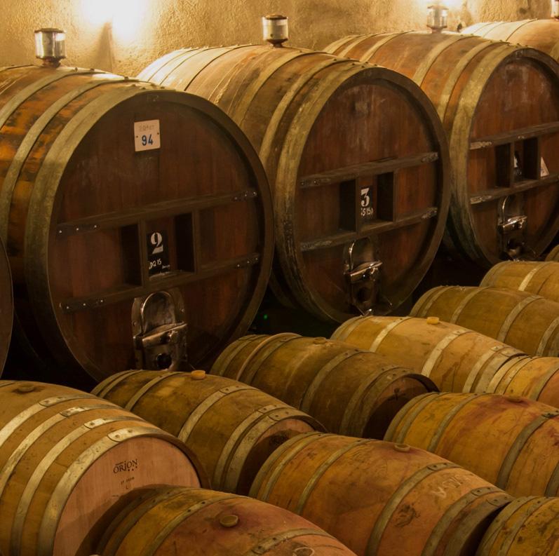 trouver-vins-fronton-leroc